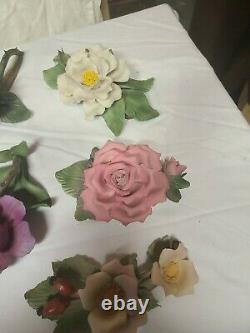 12 Months of Roses Porcelain Flowers lot of 12 Capodimonte Franklin Mint