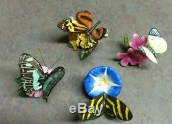 19 Vintage Franklin Mint Porcelain Butterflies of the World with 3 Display Cases