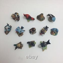 Complete Set of 12 Vintage Franklin Mint Garden Birds of the World 1982-83 Boxed