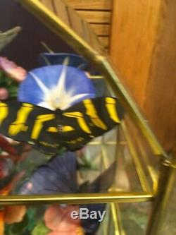 FRANKLIN MINT 13 Porcelain Butterflies of the WorLd With Center Display case