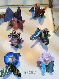 Franklin Mint Porcelain'The Butterflies of the World' Collection + Cabinet Mint