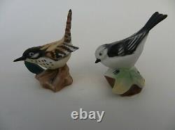 Vintage Franklin Porcelain 1982 Garden Birds of the World Miniatures, Set of 12